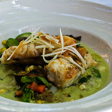Coconut-Jalapeno Red Snapper With Banana Black Bean Puree