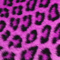 GO SMS Pink Cheetah Theme icon