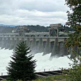 Nature's Power by Tammy Morley - Landscapes Waterscapes ( water, awe, spillway, dam, power )
