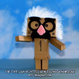 Albert Einstein Danbo by Lin Fauke - Typography Quotes & Sentences ( danbo, toy, danboard, quote, modding, albert einstein )