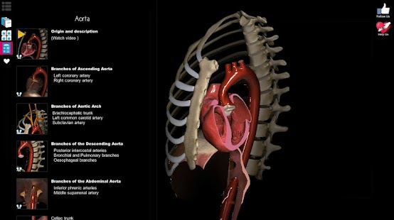 Free Download Anatomy Learning - 3D Atlas APK for Samsung