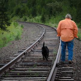 The Hobo and his Dog by Gary Hanson - People Street & Candids ( orange, wilderness, railroad, tracks, dog, walk )