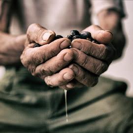 L'oro della vita by Daniele Cazzato - People Body Parts ( olive oil, work, macro, nonno, life, oro, grandfather, gold, hard, olive, oil, vita )