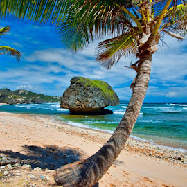 Beach on Barbados with odd rock. We don't do rocks in Florida. by Dub Scroggin - Landscapes Beaches
