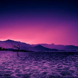 PURPLE DESERT by Cassio Centurion - Landscapes Deserts
