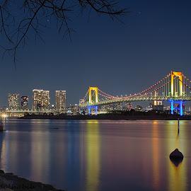 Rainbow Bridge by Hamid Alhabib - City,  Street & Park  Night