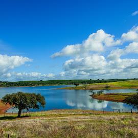Alentejo by Rubina Delgado - Landscapes Prairies, Meadows & Fields ( nature, landscape, landscapes, portugal, natural,  )