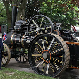 Traction Engines by John Davies - Transportation Other ( age of steam, steam engines, vintage machinery, vintage engines, steam traction engines )