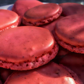 Raspberry Macarons by Rhonda Musgrove - Food & Drink Candy & Dessert ( cookie, red, macaron, raspberry, bake )