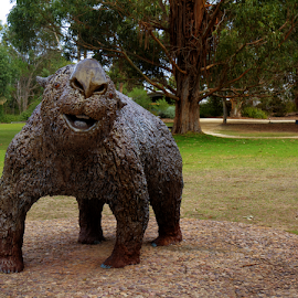 Prehistoric Wombat by Peter Keast - Buildings & Architecture Statues & Monuments ( statue, prehistoric, wombat, mamal )