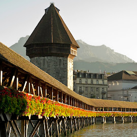 by Dacey Uthoff - Buildings & Architecture Bridges & Suspended Structures ( europe, switzerland, lake, bridge, lucerne, alps,  )
