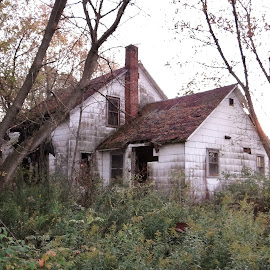 This old house. by Carolyn Kernan - Buildings & Architecture Decaying & Abandoned