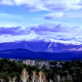 by Mary Flannery - Landscapes Mountains & Hills