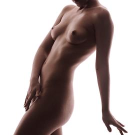 Silhouette by Vineet Johri - Nudes & Boudoir Artistic Nude ( vkumar photography, silhouette, shadows, curves )