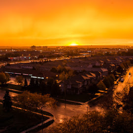 Frances Street Sunset by Michael Bazinet - City,  Street & Park  Neighborhoods ( orange, color, sunset, street, after rain )