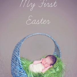Typography - Newborn at Easter by Julie Josey - Babies & Children Babies ( easter, basket, brunette, baby, egg, newborn,  )