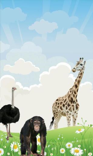 100 dyr