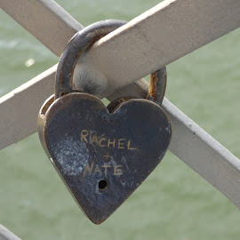 love lock by Nita Andrews - Artistic Objects Other Objects ( water, love, metal, lock, bridge )