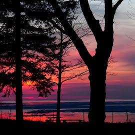 Shorehaven Sunset by Brooks Travis - Landscapes Sunsets & Sunrises ( sunset, ny, lake erie,  )