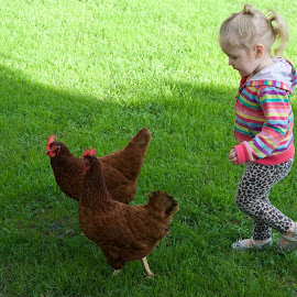Chasin chickens :) by Caitlin Strong  - Babies & Children Toddlers