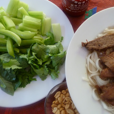 Flank Steak Draped Rice Noodle Salad