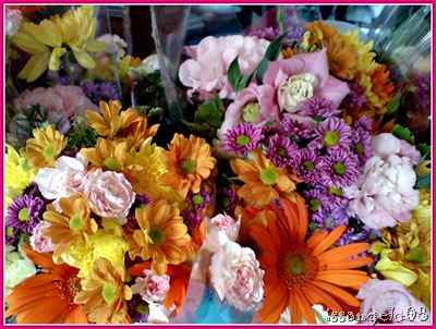 baguio cut flowers
