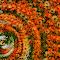 ss_flowertwirl_kgroenewald.jpg