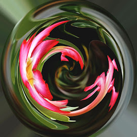 Flower Orb by Norman Tan - Digital Art Abstract ( abstract, orb, pink, flower, polar coordinates,  )
