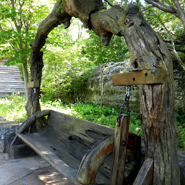 Tree Bench by Kathy Rose Willis - Artistic Objects Furniture ( wood, nature, bench, art, artistic, swing,  )