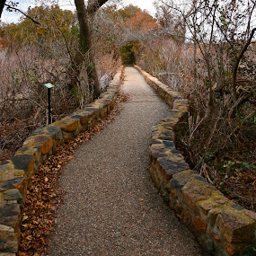 Fall Walking Path by Kathy Suttles - Buildings & Architecture Other Exteriors ( walking path, suttleimpressions, winding, nature, oklahoma, fall, path, stone, rock, landscape, wichita mnts refuge )