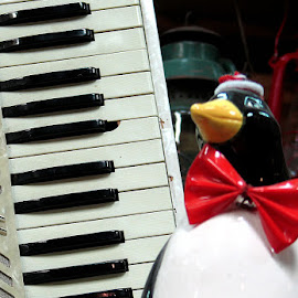 Accordion and Penguins by Kaye Petersen - Artistic Objects Musical Instruments ( red, accordion, musical, instrument, antique,  )