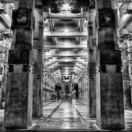 Independent Square, Sri Lanka by Buddhika Jayawaredana - Buildings & Architecture Public & Historical ( black and white, night, sri lanka, architecture, light,  )