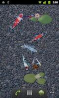 Screenshot of aniPet Koi Live Wallpaper