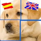 Inglés y Puzzles: Animales icon