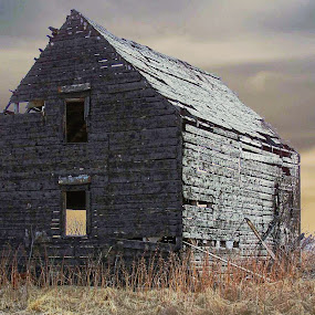 The Barn by Joerg Schlagheck - Buildings & Architecture Decaying & Abandoned ( old, sky, barn, nice., collapsed )