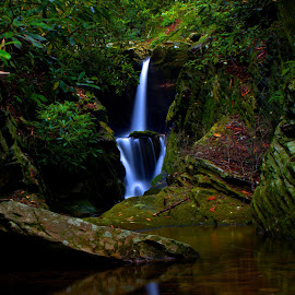Duggers falls by William Bentley Jr. - Nature Up Close Water