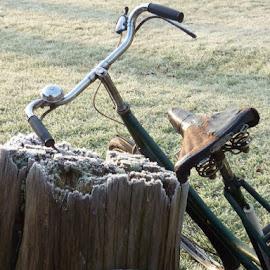 by Kinvara Jennings - Transportation Bicycles ( frosty old vintage bell retro bike bycycle )