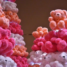 Soft Toys by Koh Chip Whye - Artistic Objects Toys (  )