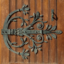 Ornate Door by Chanin Green - Buildings & Architecture Architectural Detail ( doors, details, wrought iron, france, iron )