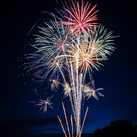 Fireworks! by Richard Tilton - Public Holidays July 4th ( fireworks, summer, july, fun, independence day )