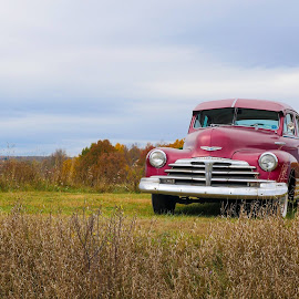 This 1950s Chevy is for sale...How can one part from a beauty like that ?? by Tufail Syed - Transportation Automobiles