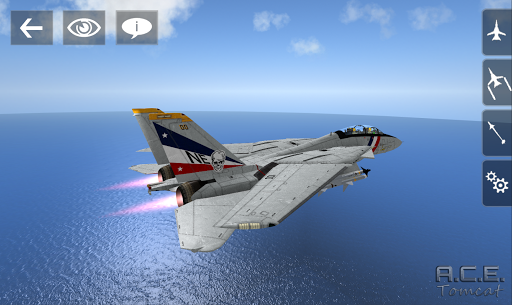 A.C.E. Tomcat - screenshot