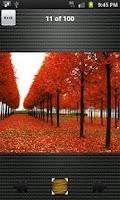 Screenshot of Galaxy S Plus Wallpapers HD