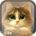 App Tummy The Kitten Lite apk for kindle fire
