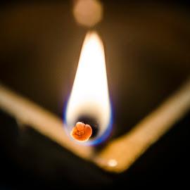 by Abhinav Maurya - Abstract Fire & Fireworks ( diwali, micro, macro photography, deepawali, diya, fire )