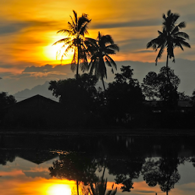 We are not alone by Pak Lang - Landscapes Sunsets & Sunrises ( reflection, kedah, waterscape, sunset, malaysia, landscape, paklang, silhouette,  )