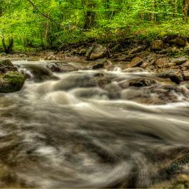 Upstream Look by Siniša Biljan - Nature Up Close Water