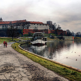 Wawel by Greg Brzezicki - City,  Street & Park  Historic Districts ( castle, boat, kraków, city, river )