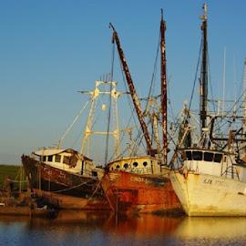 Shrimp Boats Port Arthur, Texas by Nadia Anabtawi - Transportation Boats