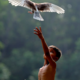 Nangkep burung by Deny Satria - Babies & Children Children Candids